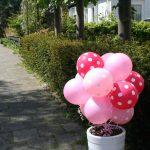 geboorte meisje bloemen decoratie
